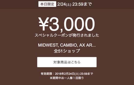 「¥3.000 スペシャルクーポンが発行されました」と届いたメール